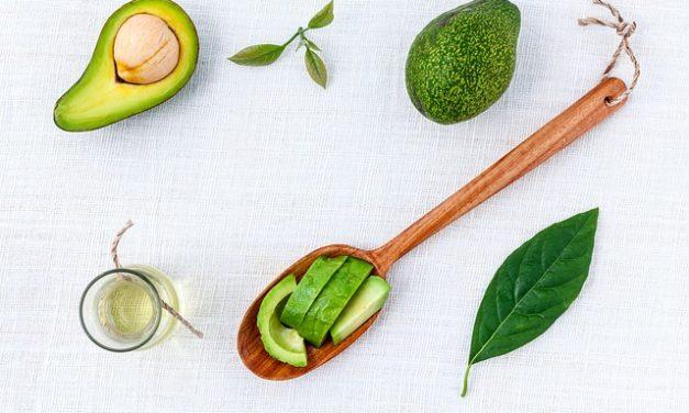 Germinazione di semi di avocado: è così che funziona