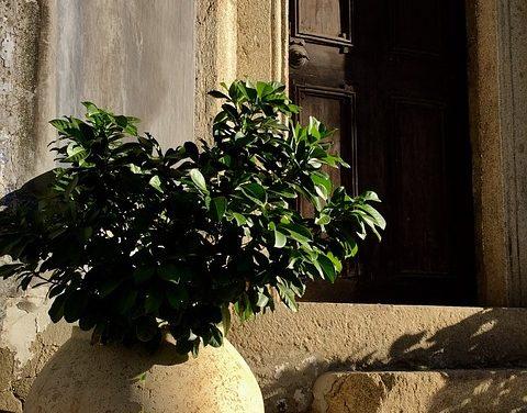Riduzione dell'affitto in caso di rottura della porta dell'appartamento? Informazioni per gli inquilini