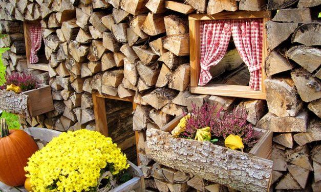 Comprare il faggio come legna da ardere: si deve essere consapevoli che