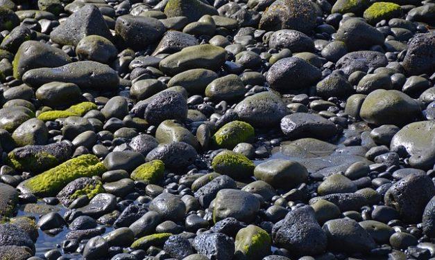 Sostituzione corretta delle pietre laviche