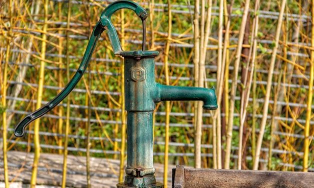 Installazione di una valvola di ritegno nella pompa da giardino: ecco come funziona