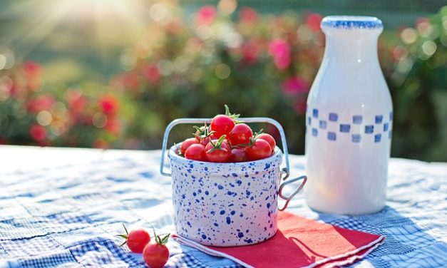 Quando i pomodori diventano rossi? Come allevare correttamente
