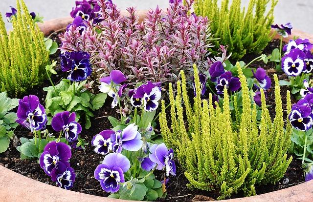 Piccolo Giardino Sul Balcone : Creazione di un piccolo giardino in pietra sul balcone: suggerimenti