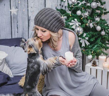 Resliquidità con il cane: in modo da poter calmare il cane di nuovo giù