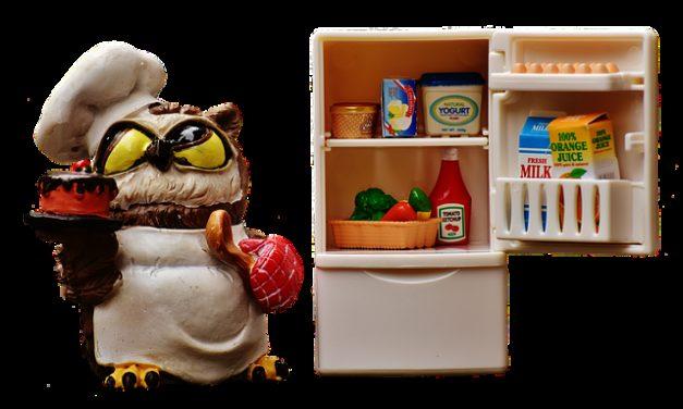Costruire il proprio frigorifero: fare un frigorifero a terra passo dopo passo