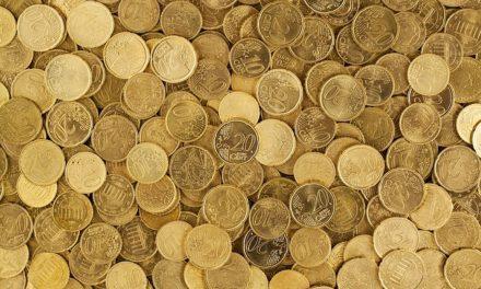 Pappagallo: calcola il costo di acquisto e conservazione corretto