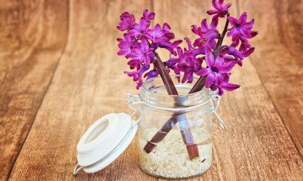 Vaso in vetro: punte di decorazione