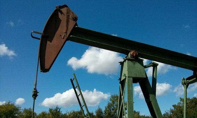 Olio da riscaldamento: premio o normale? Guida alla decisione