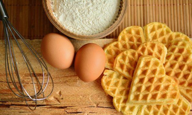 Uova d'oca di allevamento: come diventare genitori d'oca