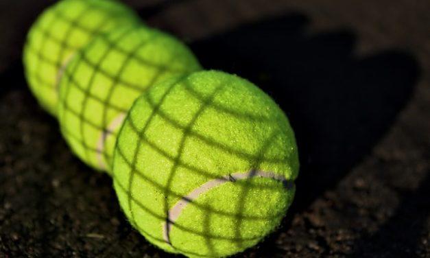 Le palline da tennis sono pericolose per i cani? Come giocare in sicurezza con il cane