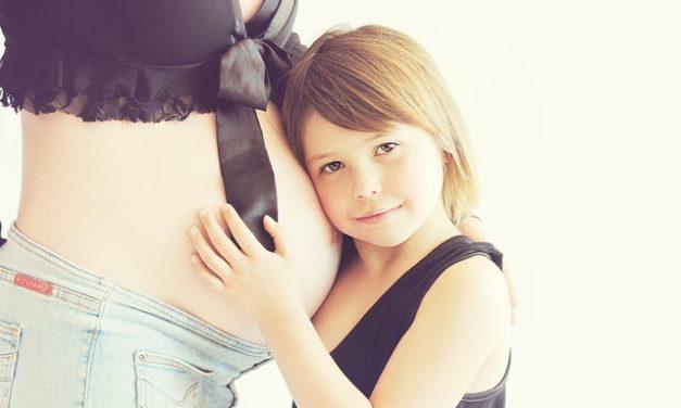 Carlino: Durata della gravidanza: Note