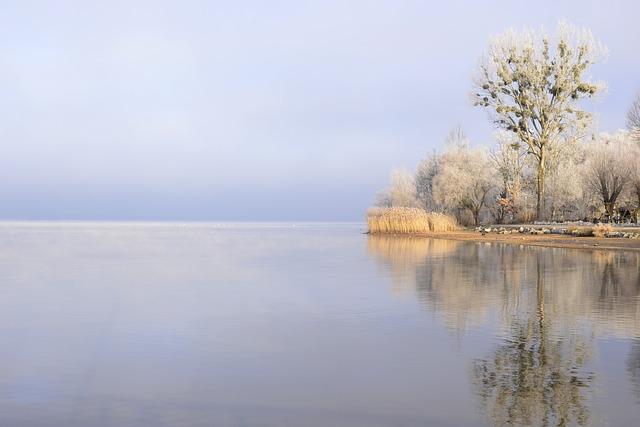 Acquario regolazione corretta della temperatura for Temperatura acquario