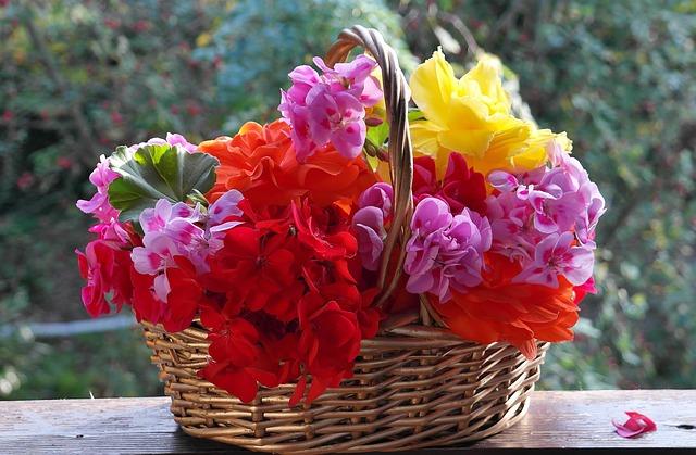 Piante da balcone per il sole: ecco come si trovano i fiori abbinati ...