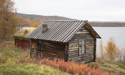 Stufa finlandese: istruzioni per l'edificio