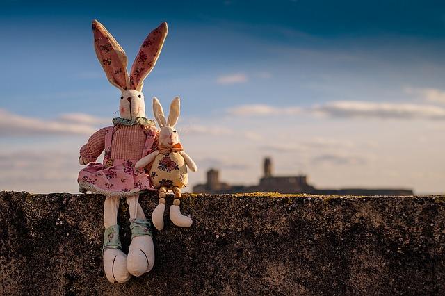 Stabile coniglio: istruzioni per l'edilizia per un alloggio adatto alle specie
