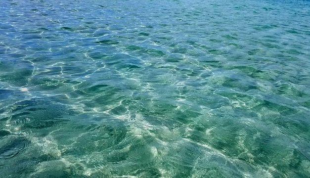 Sistema di osmosi in acquario con acqua da 200 l: la tecnologia di trattamento dell'acqua al microscopio