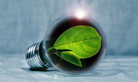 Quali lampadine di ricambio acquistare? Note sulle lampade a risparmio energetico