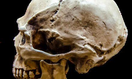 Mettere a disposizione il proprio cadavere per scopi medici: tenere presente quanto segue