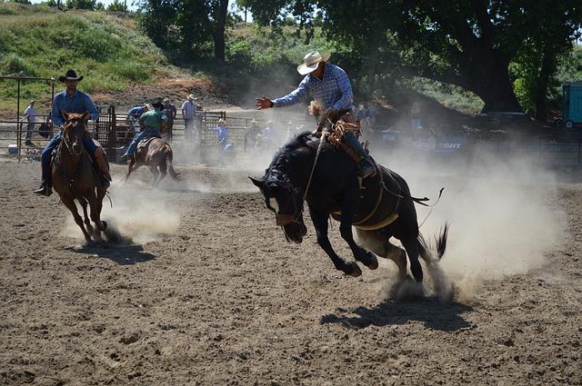 Equitazione senza sella: Istruzione