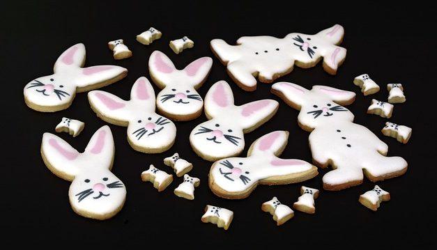 I conigli possono mangiare uva? Come nutrire i conigli secondo la loro specie
