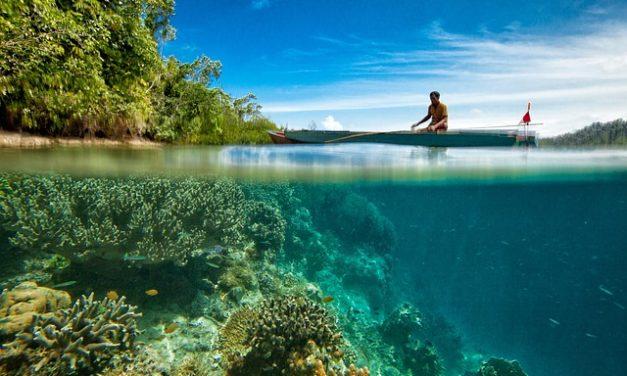 Acquisto collane di coralli: cosa guardare fuori quando li compra