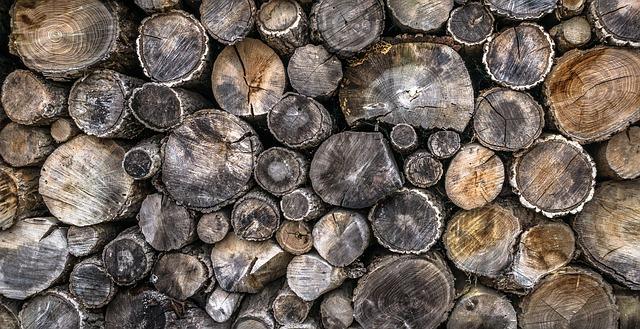 Piantatura di un traliccio di legno in una scatola da fioriera: Suggerimenti