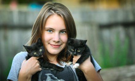 Fare il gatto si coccola: come farsi conoscere dalla tigre di casa