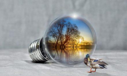 Pro e contro delle energie rinnovabili: è così che decidete