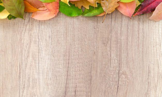 Utilizzo del piano in legno di quercia come tavolo da giardino
