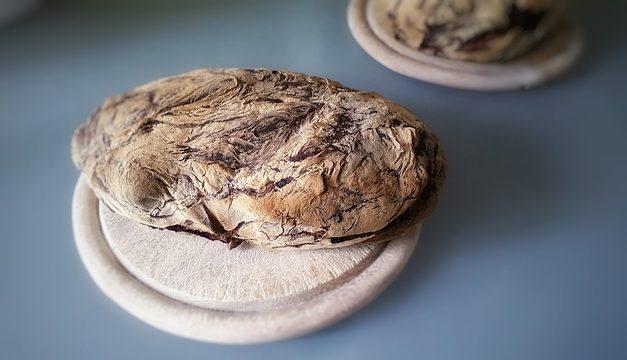 Quale legno utilizzare per una hutch coniglio? Consigli utili