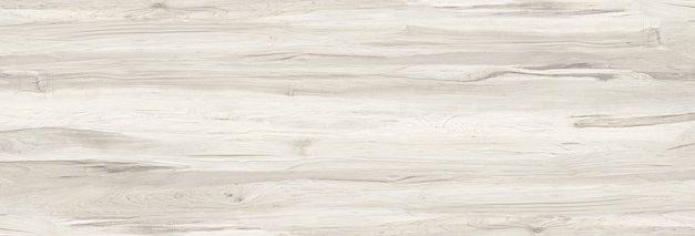 Vernice e olio per legno Teak: procedere come segue