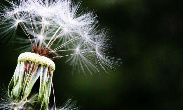 Allergia della saldatura: come affrontarla