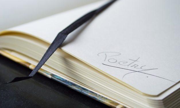 Quale notebook è giusto per me?  Questo aiuta nella decisione