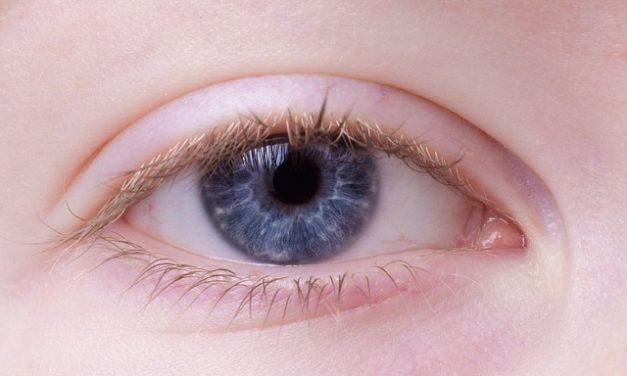 Occhiello: la funzione spiegata in modo semplice