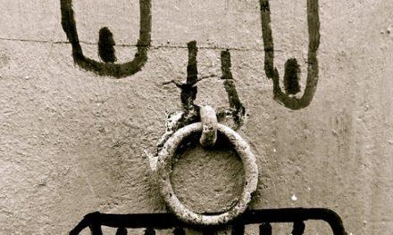Chiusura di una cintura con 2 anelli: ecco come funziona