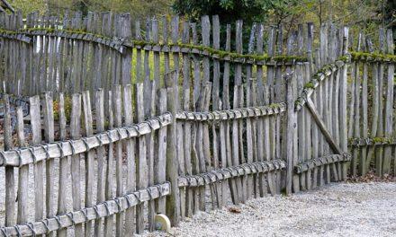 Costruire un recinto a ruote libere per i conigli