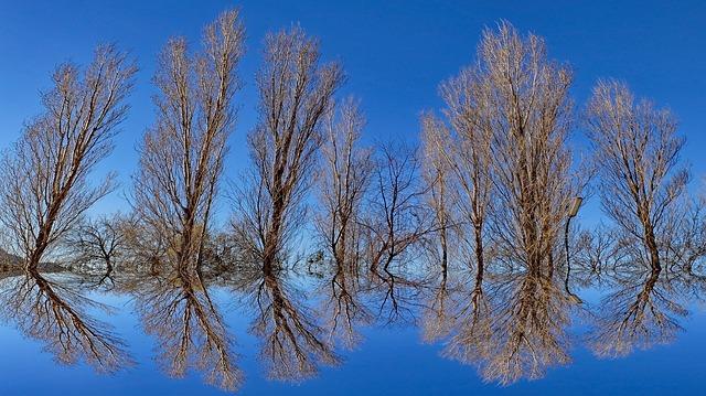Riconoscere l'illusione ottica nella vita di tutti i giorni: è così che funziona