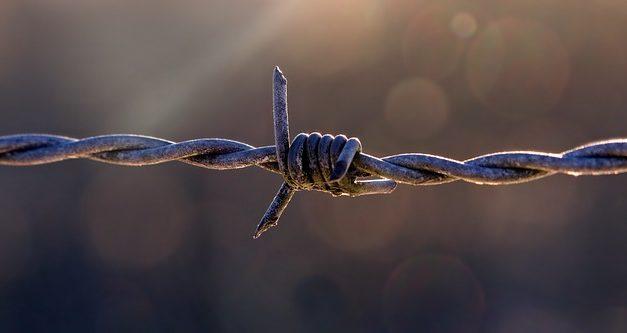 """""""Senza recinzione in filo spinato""""? Fatti interessanti sull'argomento"""