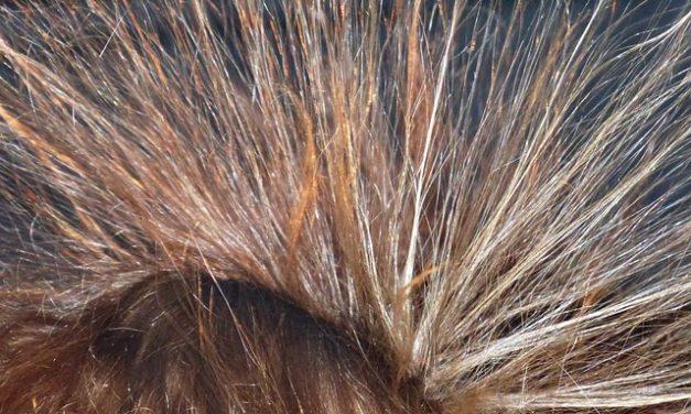 Dutt con cuscino dado: come ottenere i capelli fatti