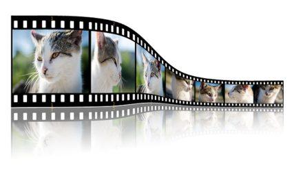 IMovie: Formati