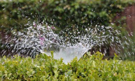 Costruire il proprio sistema di irrigazione automatica: ecco come funziona