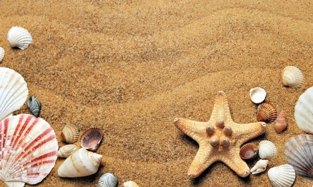 Fare sale marino peeling tu stesso