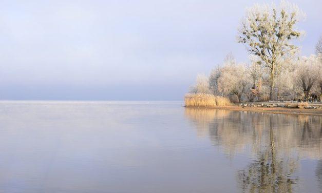 Acquario: Regolazione corretta della temperatura