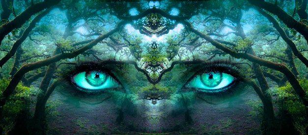Eidetica: come allenare la percezione