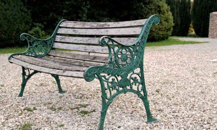 Tagli di legno tagliato e trasformato in sedute da giardino
