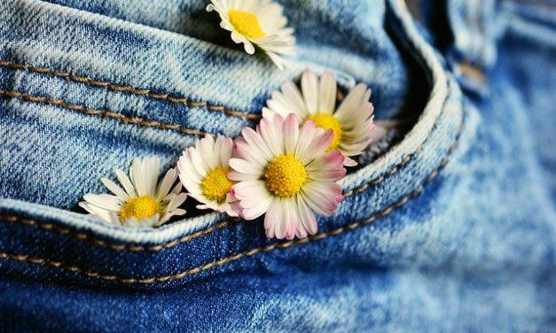 Jeans corti: procedere come segue