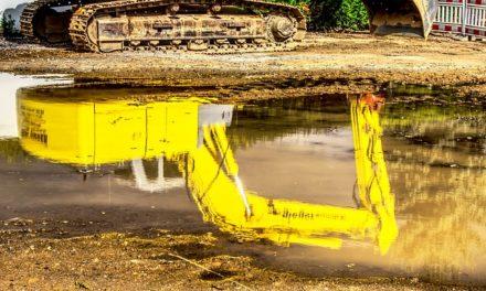 Acqua piovana: Evitare l'odore di marciume nel serbatoio dell'acqua piovana