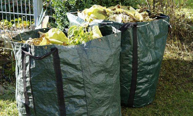 La combustione dei rifiuti del giardino – questa è la situazione legale nel proprio giardino