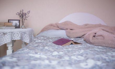 Costruire da soli un letto per gatti: ecco come funziona