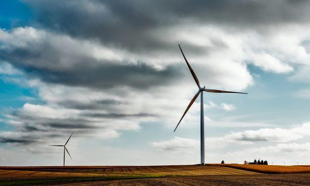 Rendimento di una centrale eolica: come calcolare un progetto di elettricità verde